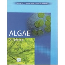 Algae (English) 1st Edition